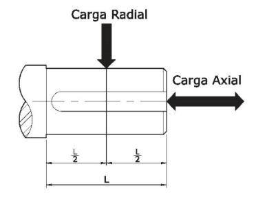 Esquema carga radial y axial