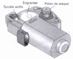 Sunroof gear motor