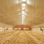 tecnologías del sector ganadero