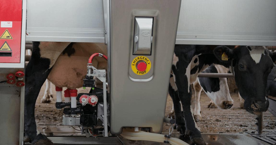 Sistemas de ordeño automático